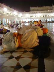 Line of Singhs (Tanu Kaur) Tags: india punjab singh nihang harimandarsahib