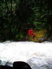Zipline (Dru!) Tags: trees red canada wet forest work bc forestry britishcolumbia rainy sonia zipline highwater streamcrossing americancreek