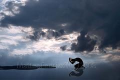 20 (matteo.fedrizzi) Tags: madrid ray foto surrealism montaggi trento matteo escher cuts camus cortes sutures absurda uelsmann surrealismo fedrizzi assurdo suturas