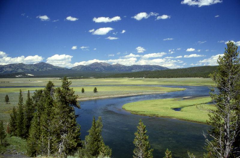 800px-Yellowstone_River_in_Hayden_Valley