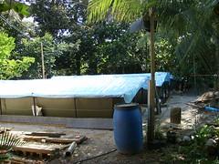 tapak kolam (shakirabid) Tags: kedah kolam tapak lintahfarm