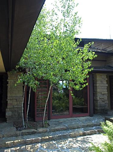 Front Entrance at Taliesin