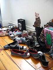 Tatyanah's shoes