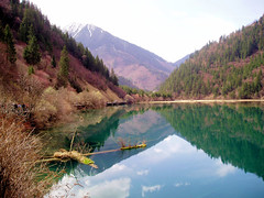 China Travel - Jiuzhaigou, Sichuan  (Lao Wu Zei) Tags: china travel lake nature photos unesco 200views favourite  sichuan  jiuzhaigou worldheritage