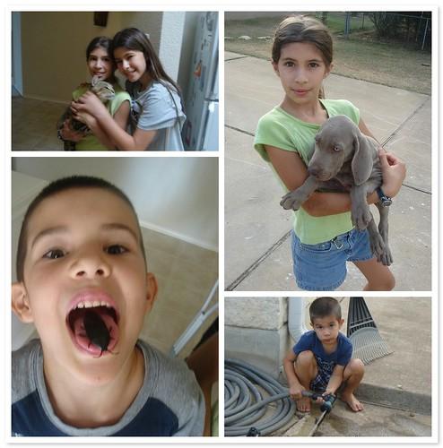 hidler kids