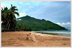 Palawan Escapade (zyans) Tags: palawan