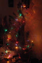 Christmas Tree-1 (by Louis Rossouw)