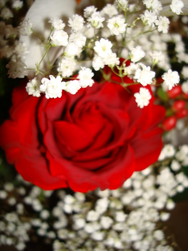 sweet love poems for your boyfriend. pictures sweet love poems for