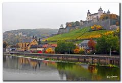 Vineyard Hill (Sergio Parisi) Tags: germany vineyard wrzburg nikond300 sergioparisi