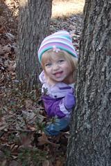 playing peekaboo around a tree