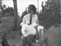 Girl with a white angora rabbit, 1930s / by Sam Hood (State Library of New South Wales collection) Tags: girls portrait pet pets rabbit wool girl animal fence mammal bucket child farm conejo fluffy tie rabbits angora job pail jodhpur harvesting angorarabbit statelibraryofnewsouthwales xmlns:dc=httppurlorgdcelements11 samhood dc:creator=httpnlagovaunlaparty587349