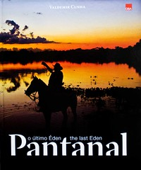 Pantanal - The last Eden (Valdemir Cunha) Tags: wild brazil horse bird nature water brasil landscape farm wildlife wilderness cavalo matogrosso pantanal wetland matogrossodosul fazenda wildplace whbrasil