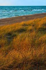 _MG_7251 Beach Scene Grand Mere State Park Michigan (www.cemillerphotography.com) Tags: nature dark landscape outdoors evening pond sand sundown dusk hiking hill scenic landmark swamp vista marsh overlook quartz saltation height nightfall ecological ecosystem glacial combers berriencounty beachgrass swale marram stevensville foredune nippissing dunescape backdune interdunal transversedune parabolicdune paralleldune lineardune aeolianprocess