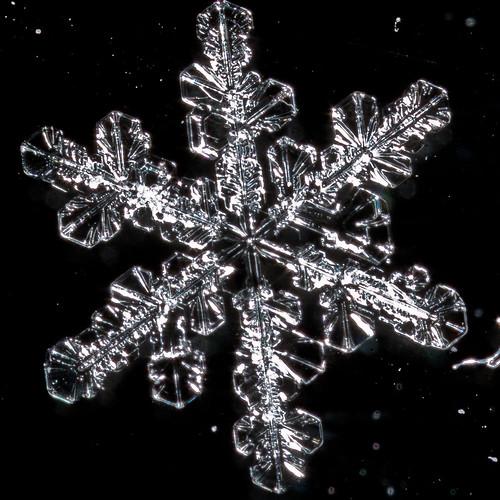 Snowflake 2.4