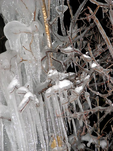 Icy Cold Winter's Night