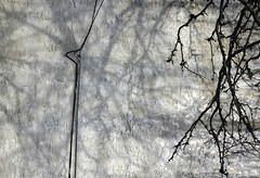 branching shadows (alankin) Tags: 15fav texture philadelphia wall nikon shadows pennsylvania branches d70s surface textures wires photowalk philly walls nikkor mountairy 50views mtairy almostmonochromatic 80200mmf4556d mtairyavenue niknala 15nov2006 1500034amu zwallsgroup wallswires