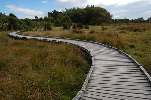 Christchurch - Travis Wetland