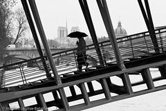 (Hughes Léglise-Bataille) Tags: street bridge blackandwhite bw woman paris france topf25 silhouette umbrella women day noiretblanc femme protest demonstration streetphoto notre dame 2008 manif manifestation journée parapluie passerelle solferino