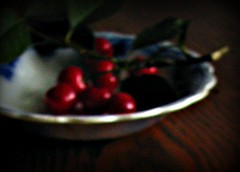 One must ask children and birds... (circulating) Tags: blue light shadow red stilllife white green leaves cherry table cherries quote antique bowl twig dreamy aged unfocused intentionalblur flowblue