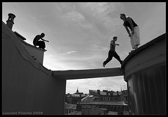 Cats on a hot tin roof (Laurent Filoche) Tags: france freerunning toulouse parkour yamakasi notcropped rangueil bonzography parkourportfolio