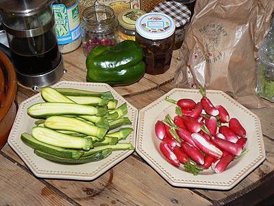 courgettes et radis.jpg
