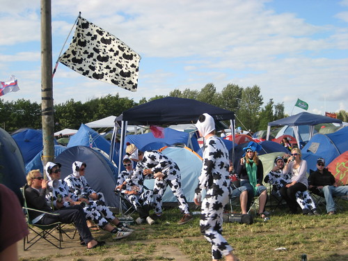 The cow camp