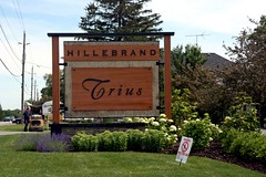 We're here...Hillebrand Estates Winery