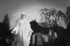 White Jesus (djemde) Tags: nottingham bw white black tree kodak scanner cemetary jesus tmax400 ricohr1 aslevel mobformat09filmstill