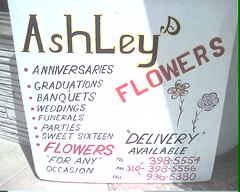 'Flower