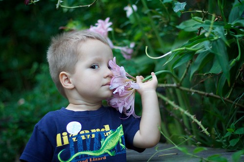 Inhaling Flowers