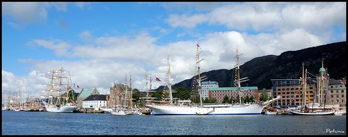 Tall Ships' Races 3