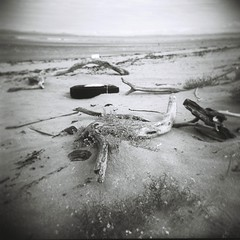 Beach Scene with Tyre (jamalrob) Tags: film square holga format ilford panf iso50 gcfn