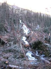 IMG_2444 (Albotography) Tags: flowers camping trees snow mountains alps heidi washington hiking heather olympicpeninsula alpine backpacking frogs fields marmots soundofmusic royalbasin subalpine