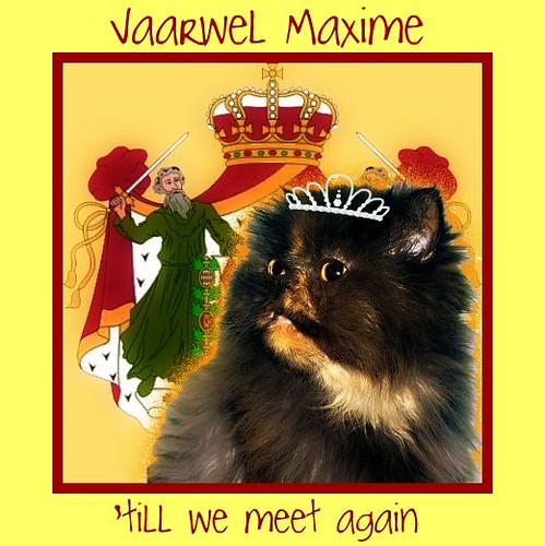 'till we meet again, Maxime
