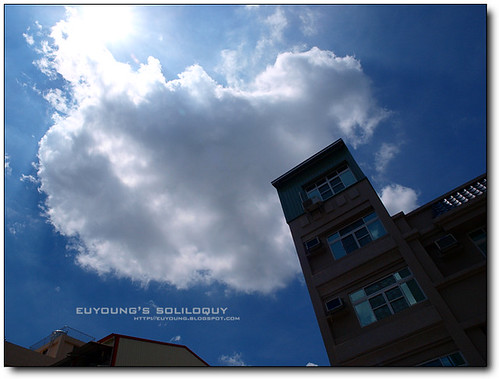 Olympus_E520_sample_40 (by euyoung)
