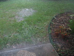 Flooding at my house