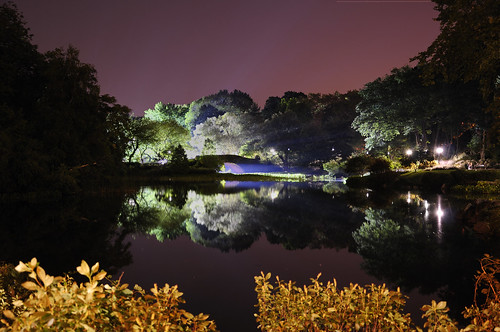 Central Park, NYC -DSC_0466-