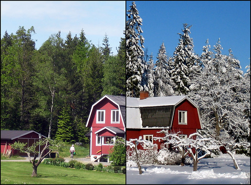 Summer vs. Winter | Flickr - Photo Sharing!