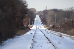Train Tracks (Wild @ Heart! / Lee Toua Photography) Tags: beautiful train canon photography eos photo vanishingpoint nice great traintracks tracks lee railroads xsi lakeelmo snowcold 450d toua