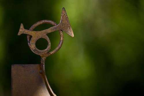 #4 Trumpet_5891