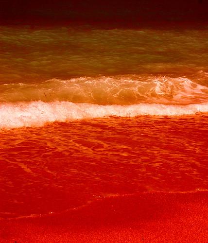 Blood Tint #7