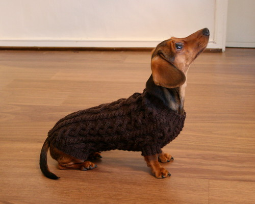 Hertta posing in her new sweater