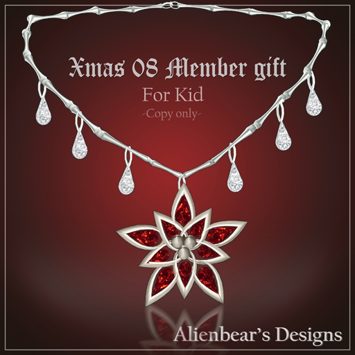Xmas08 kid member gift