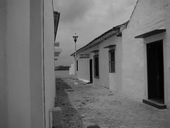 Archivo Tlacotalpan - Agosto 2008 (244)