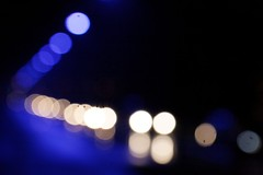 black and blue (Plutone (NL)) Tags: blue white black bokeh denhaag beatrixpark notchristmas