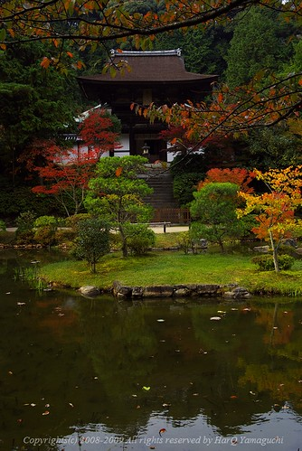 A garden of Ensho-Ji Temple, autumn
