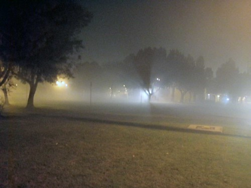 csulb in mist at night