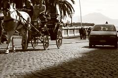 Fra Antico e Moderno (DTart90) Tags: canon eos punto fiat napoli davide cavallo macchina seppia efs1855 tartaglia carrozzella 400d plasticotto phdavidetartaglia