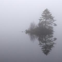 The Fog on the Loch (Dan Baillie) Tags: mist fog square island scotland nikon loch portfolio galloway dumfriesandgalloway blueribbonwinner puddock wigtownshire mochrumloch danbaillie bailliephotographycouk bailliephotography wigtownshirephotographer dumfriesandgallowayphotography