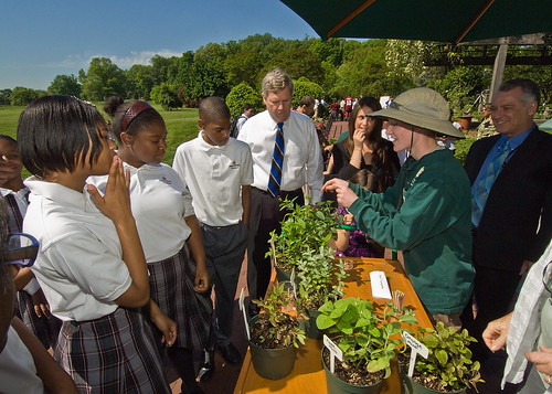 Secretary Vilsack and students learn about different varieties of mint